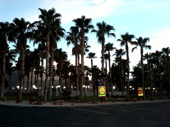 BEST WESTERN Pahrump Oasis: view from parking lot