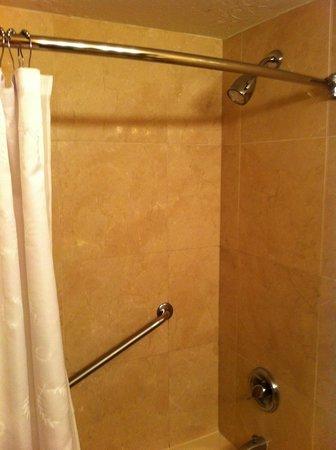 Sheraton La Jolla Hotel: Bathroom