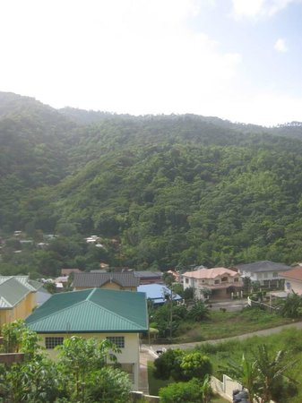 The Valley Oasis : the view from our window