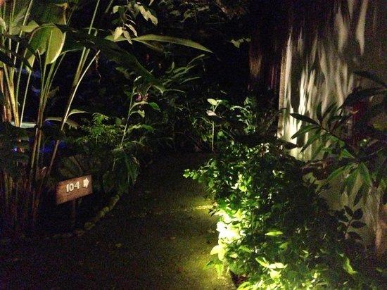 Piedra de Agua Palenque: Camino a la habitación
