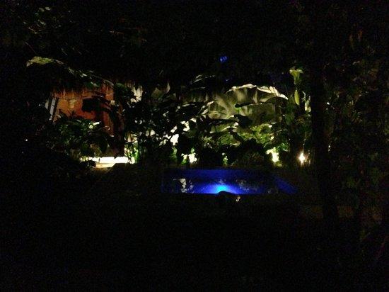 Piedra de Agua Palenque: La piscina y el jacuzzi