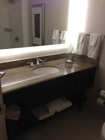 Hilton Atlanta Airport: bath