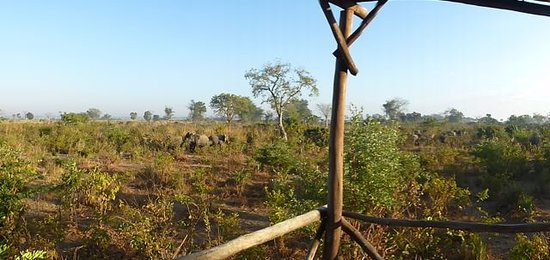 Liwonde Safari Camp: Elephants at platform 2