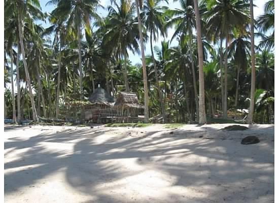 Skip's Beach Resort: beach.