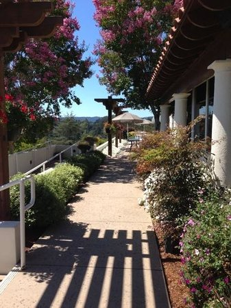 Chaminade Resort & Spa: On the patio