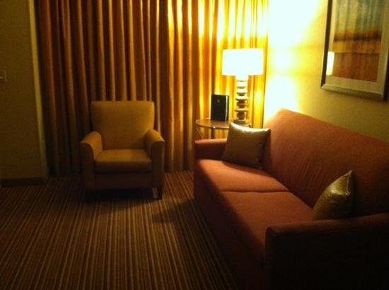Embassy Suites by Hilton Nashville SE - Murfreesboro: large living room with sleeper sofa