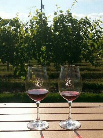 River Bend Vineyard & Winery : Enjoying our wines with a beautiful view