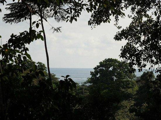 Villas de Oros: ocean view