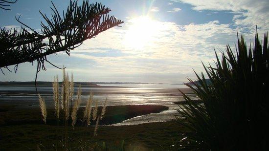 Port Waikato Holiday Park: Low tide at the estuary