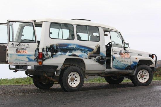 Seal Coast Safari : 4 wheel drive