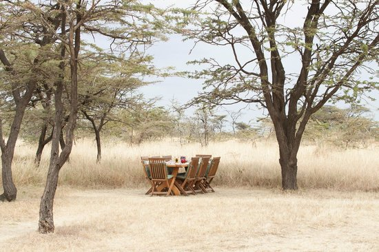 Kicheche Bush Camp: Outside lunch setting
