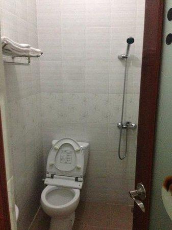 South Sumatra Hotel: bathroom