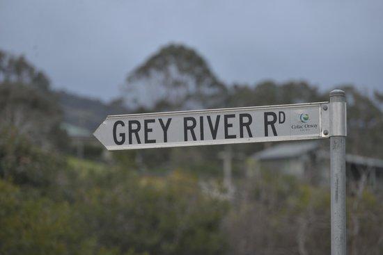kennett river koala trail starts on the grey river road. Black Bedroom Furniture Sets. Home Design Ideas