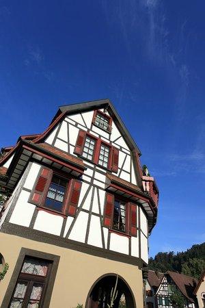 Hotel zum weyßen Rößle: Snapshots of the town nearby