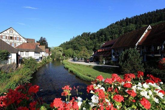 Hotel zum weyßen Rößle: Morning walk  of nearby region