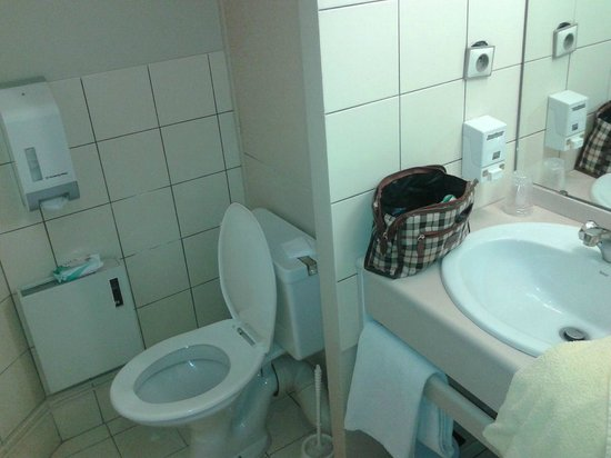 Hotel de Grignan : Il bagno modello anni '70. Da notare la presa elettrica a penzoloni!!