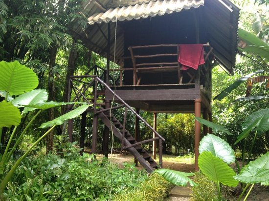 Khao Sok Valley Lodge: Our Jungle Hut