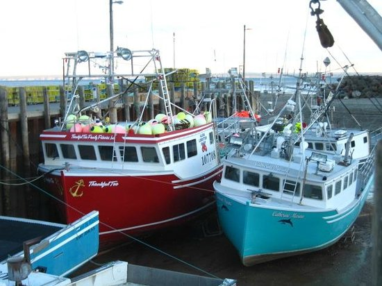 Parkland Village Inn : Fishing boats tied up at dock right next to hotel.