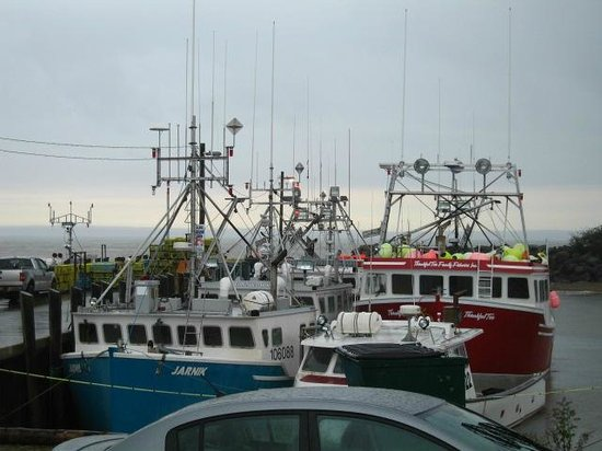 Parkland Village Inn: Harbor full of lobster/fishing boats.
