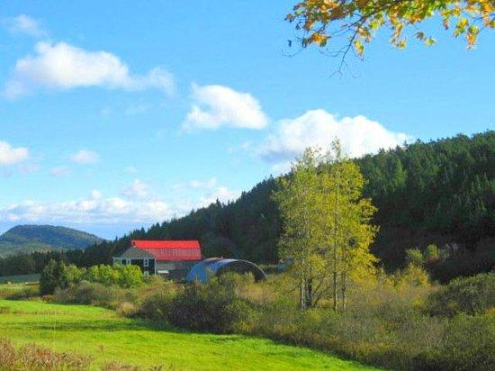 Parkland Village Inn : Scenic drive n. Alma - Hwy915