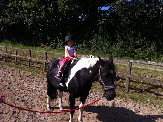 Polean Farm Cottages: pony rides