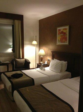 LaresPark Hotel: La stanza