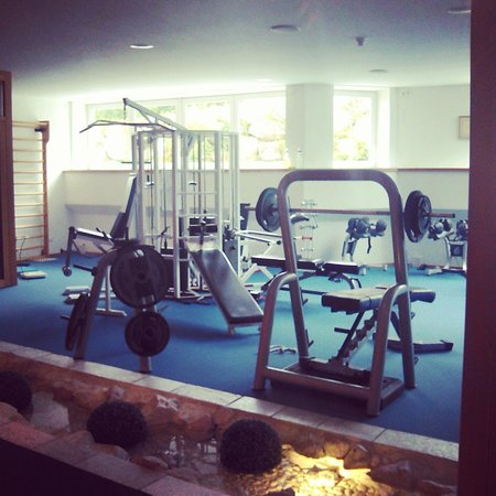 Sport & Kurhotel Bad Moos : Palestra