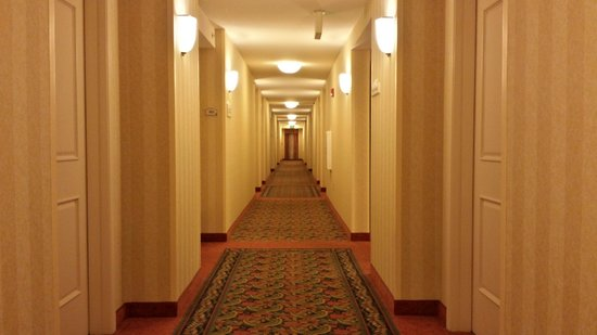 Hilton Garden Inn, Oxnard/Camarillo: hallway leading to our room