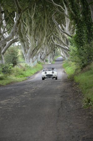 Classic car driving down The Dark Hedges