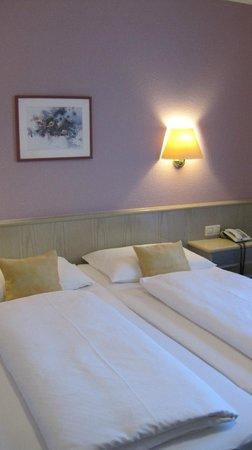 Hirschengarten Hotel: camera