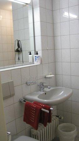 Hirschengarten Hotel: bagno
