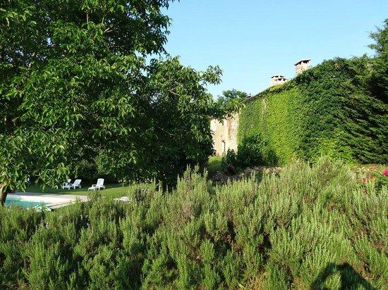 Le Mas de Rabaste : Jardin et piscine