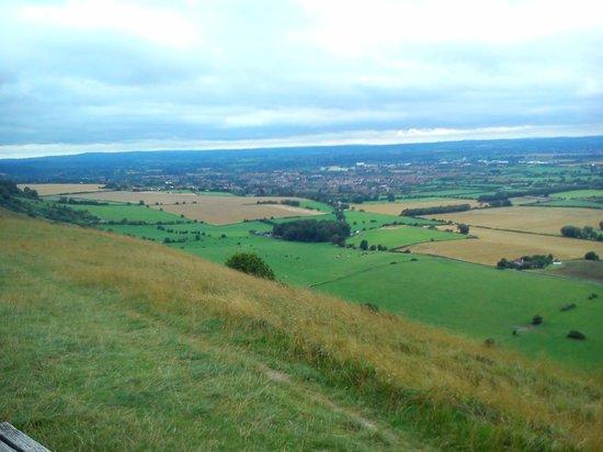Westbury White Horse: The view