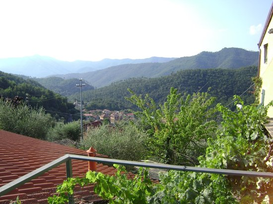 Agriturismo La Crosa: View from terrace (morning)