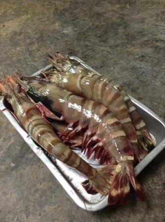 Belgian Beer Bar / restaurant : tiger prawn....
