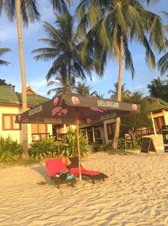 Belgian Beer Bar / restaurant : bbb on the beach