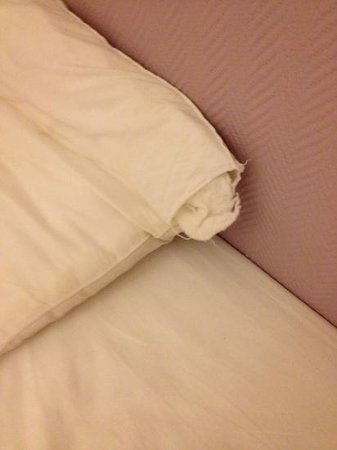 Hotel Richard: pillows