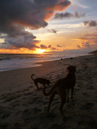 Hotel Meli Melo: Sunset, Playa Santa Teresa