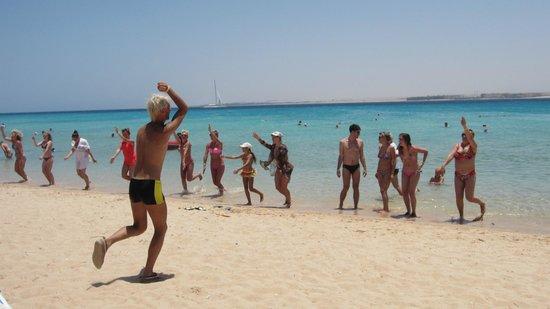 Pyramisa Sahl Hasheesh Resort: Beach