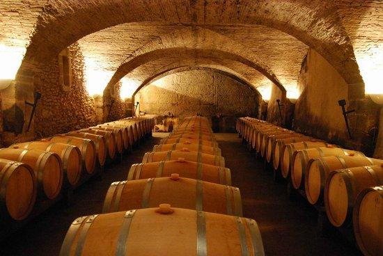 Visite de la cave picture of chateau la nerthe for Chateau la nerthe