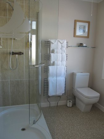Waters Reach Guest House: Shower room of the Friars Cliff room