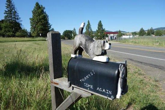 Dog Bark Park Inn : The mail box