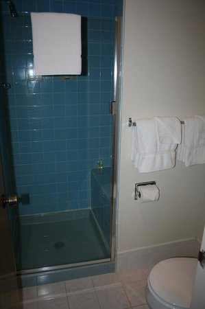 Red Coach Motor Lodge : Bagno