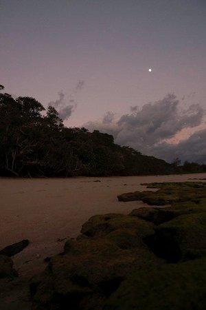 Green Island Resort: Beach at dawn