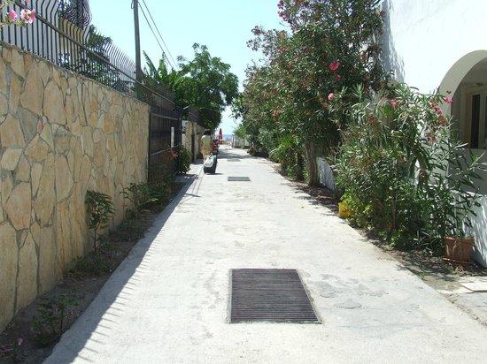 Club Hotel Sts Bodrum: Viale per andare in spiaggia