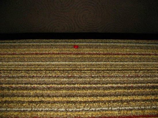 Residence Inn Atlanta Alpharetta/North Point Mall: Candy under sofa