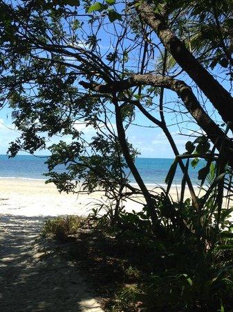Pinnacle Village Holiday Park : Bounty beach camping