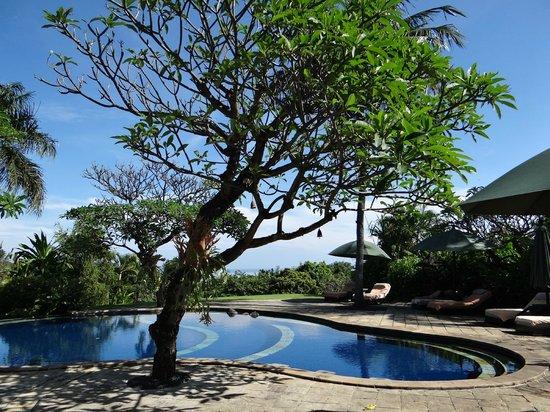 The Damai: piscine