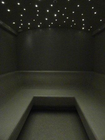 Ramada Plaza Milano: spa sauna