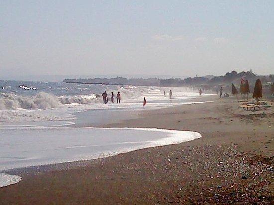 Minoa Palace Resort: Η παραλία